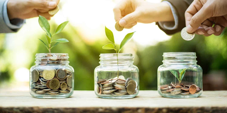 business loan money plant
